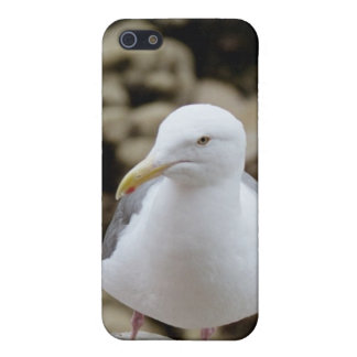 Seagull - Speck® Fitted™ Hard Shell Case for iPhon