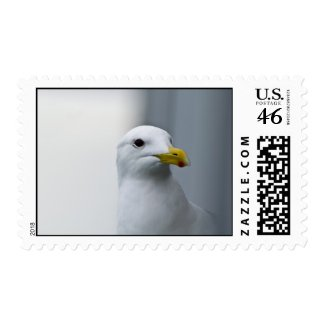 Seagull Stamps