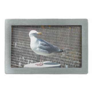 Seagull standing on a pillar at the ocean rectangular belt buckle