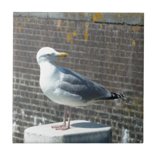 Seagull standing on a pillar at the ocean ceramic tile