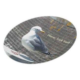 Seagull standing on a pillar at the ocean melamine plate