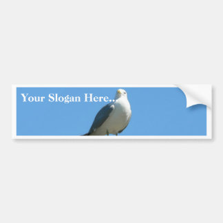 Seagull Standing On Wood Bumper Stickers