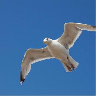 seagull statuette