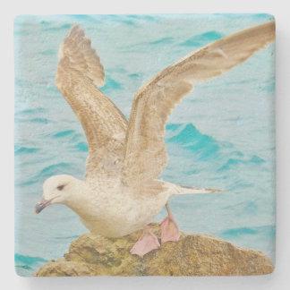 Seagull - Stone Coaster