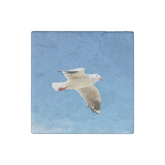 seagull stone magnet