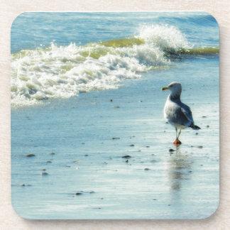 Seagull Stroll Drink Coaster