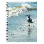 Seagull Stroll Notebook
