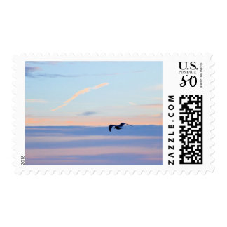Seagull Sunrise Sunset Bird Beach Stamp