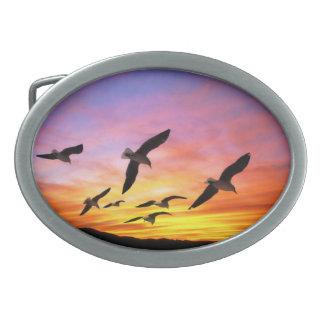 Seagull Sunset - Flying Gulls at Sunset Belt Buckles