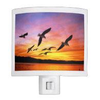 Seagull Sunset - Flying Gulls at Sunset Night Lite