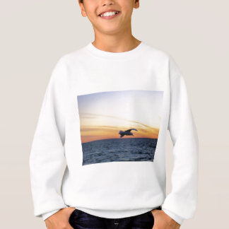 seagull sunset kotz sweatshirt