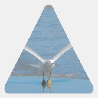 Seagull Take Off Triangle Sticker