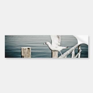 Seagull taking off the rails bumper sticker