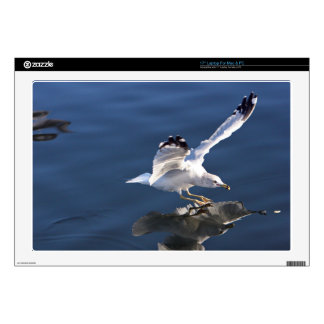 Seagull Themed, Gorgeous Seagull Landing On The Se Laptop Skins