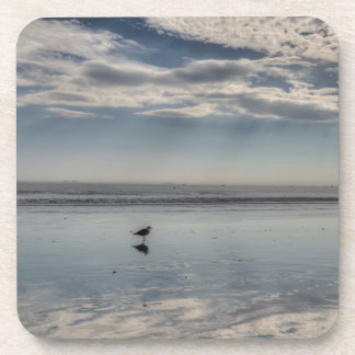 Seagull Walking on Beach Coasters