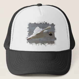 Seagull with clam trucker hat