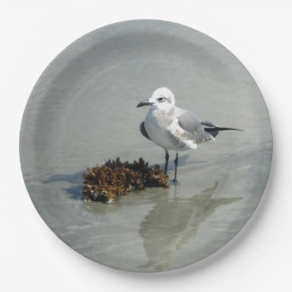 Seagull with Seaweed Paper Plate