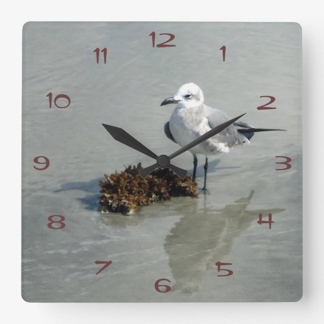 Seagull with Seaweed