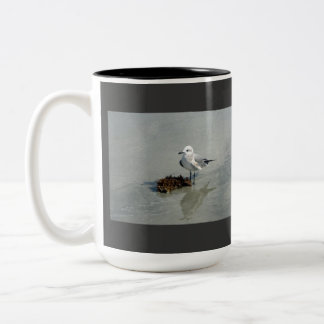 Seagull with Seaweed Two-Tone Coffee Mug