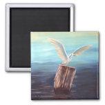 Seagull: www.AriesArtist.com Magnets