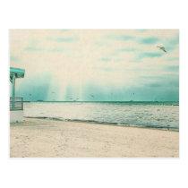 Seagulls and Gazebo at Higgs Beach Key West FL Postcard