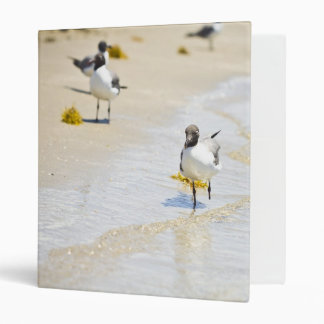 Seagulls and sandcastles binder