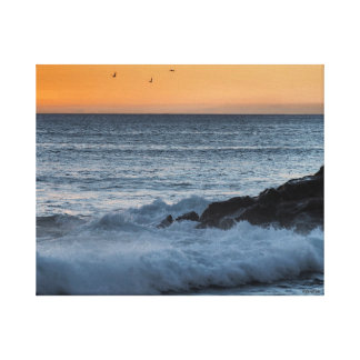 Seagulls and surf canvas print