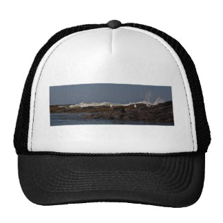 Seagulls and Surf Trucker Hat