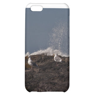 Seagulls and Surf Cover For iPhone 5C
