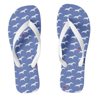 Seagulls and the suns flip flops