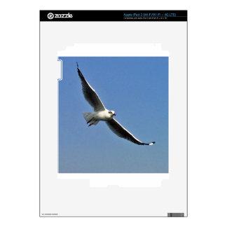 Seagulls are beautiful birds iPad 3 decals