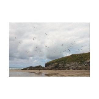 Seagulls at Porth Beach Newquay Cornwall Canvas Print