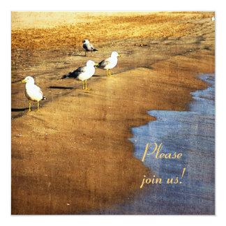 seagulls at sandy beach at sunset invitation