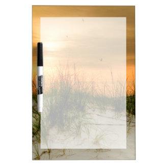 Seagulls at Sunrise Dry-Erase Board