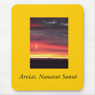 Seagulls at Sunset in Arviat, Nunavut Mouse Pad