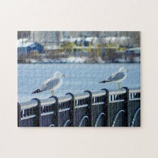 Seagulls At The Bangor Waterfront Jigsaw Puzzle