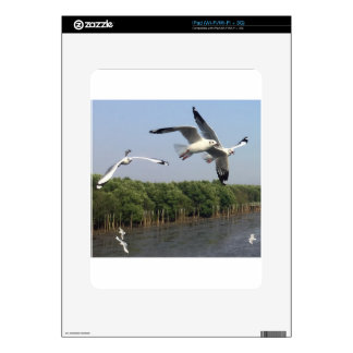 Seagulls at the beach decals for iPad