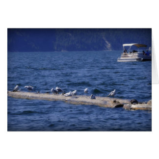 Seagulls At The Lake Stationery Note Card