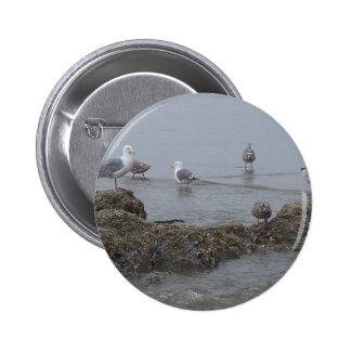 Seagulls Pin