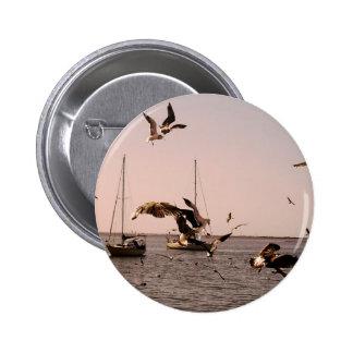 Seagulls Buttons