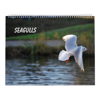 Seagulls Calendar