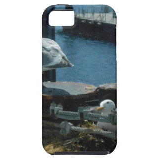 Seagulls iPhone 5 Covers