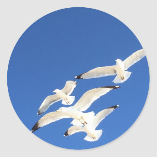 Seagulls Classic Round Sticker