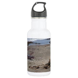 Seagulls feeding on the beach 18oz water bottle