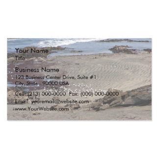 Seagulls feeding on the beach Double-Sided standard business cards (Pack of 100)