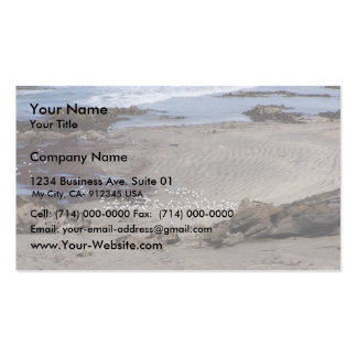 Seagulls Feeding On The Beach In Dunedin Double-Sided Standard Business Cards (Pack Of 100)