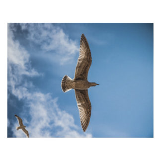 Seagulls Flying against a Blue Sky Panel Wall Art