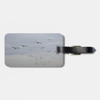 Seagulls flying luggage tag