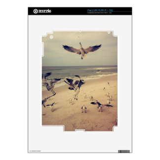 Seagulls flying on the beach skin for the iPad 2