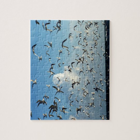 seagulls flying over beach jigsaw puzzle